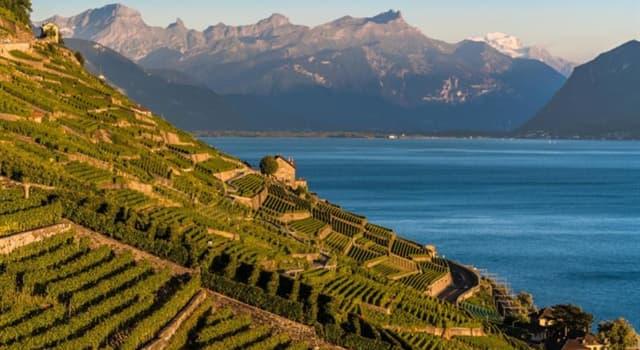 Geografia Pytanie-Ciekawostka: Gdzie znajdziesz wpisane na listę dziedzictwa kulturowego UNESCO winnicy tarasowe Lavaux?
