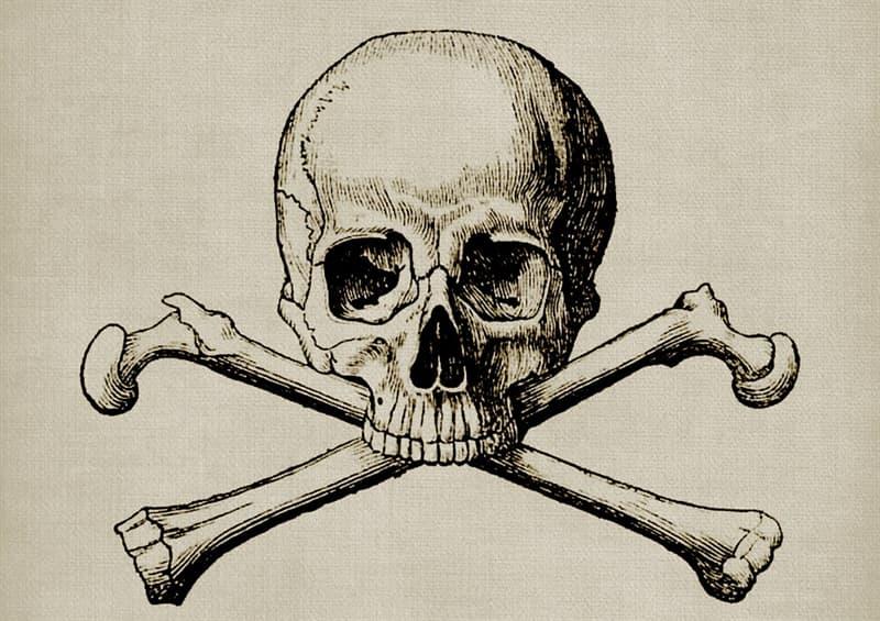 Наука Запитання-цікавинка: Де знаходиться найменша кістка в людському тілі?