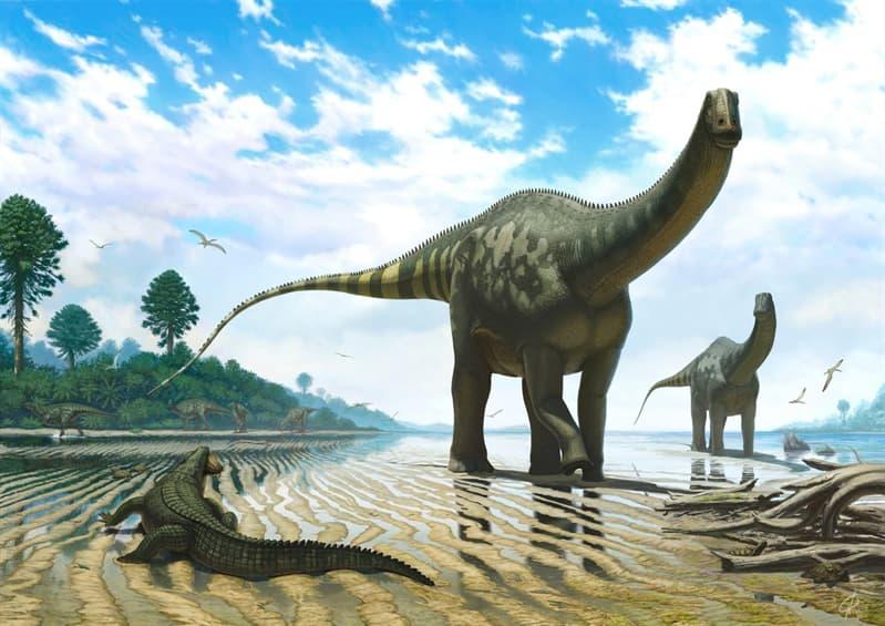Наука Запитання-цікавинка: Яка найбільш ймовірна причина зникнення динозаврів?