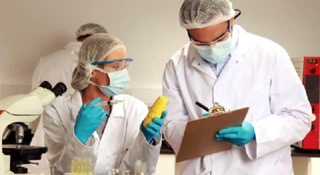 Сiencia Pregunta Trivia: ¿Qué estudia la bromatología?