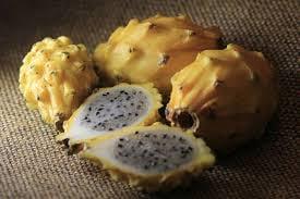 Naturaleza Pregunta Trivia: ¿Qué fruta se muestra en la fotografía?
