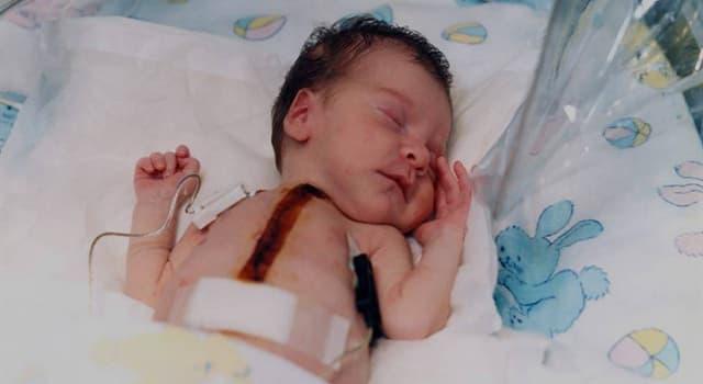 nauka Pytanie-Ciekawostka: Baby Fae to pierwsze niemowlę, któremu skutecznie przeszczepiono serce. Od kogo je dostała?