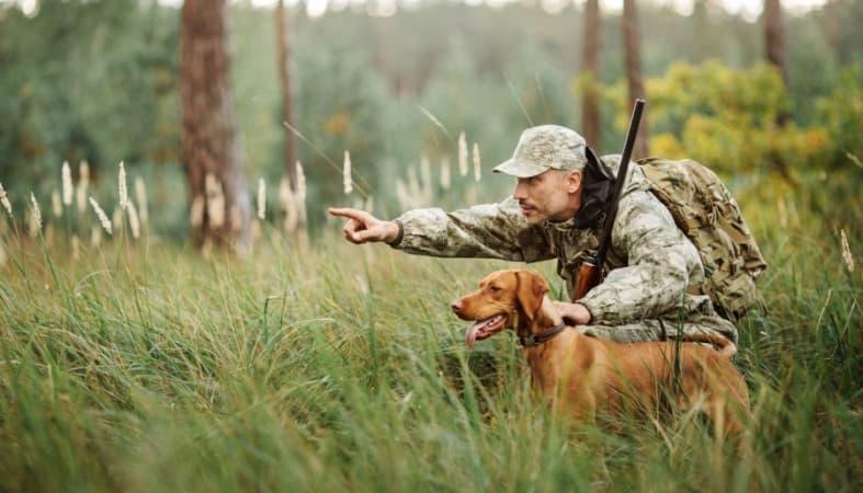 Культура Запитання-цікавинка: Що збирають люди, які захоплюються тихим полюванням?