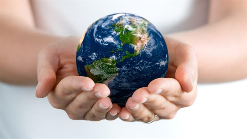Суспільство Запитання-цікавинка: Що є символом миру?