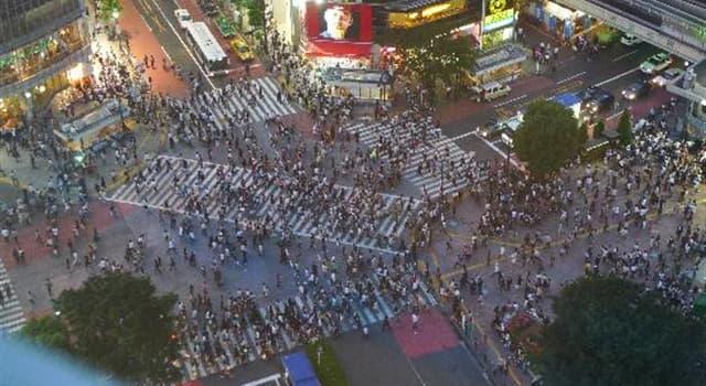 Geografía Pregunta Trivia: ¿Cuál es el cruce peatonal más transitado del mundo?
