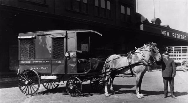 Sociedad Pregunta Trivia: ¿Cuál fue el tipo de paquete más peculiar que entregó el Servicio Postal de EE.UU. entre 1913 y 1920?