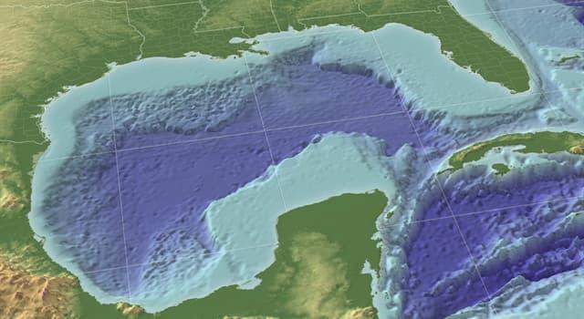 Geografía Pregunta Trivia: ¿Cuáles de estos  estados de los Estados Unidos de América  bordean el Golfo de México?