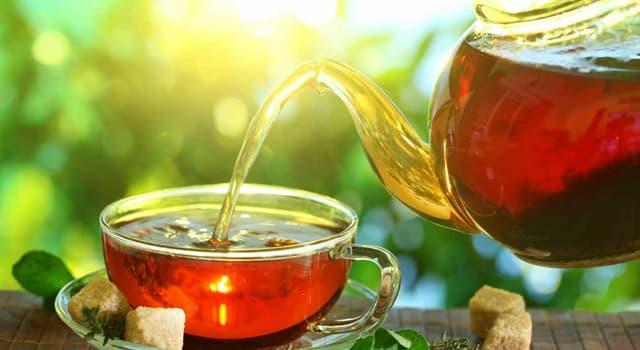 Historia Pregunta Trivia: ¿En dónde se usó por primera vez el té?