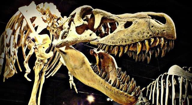 Сiencia Pregunta Trivia: ¿En qué período geológico proponen los científicos que se extinguieron los dinosaurios?