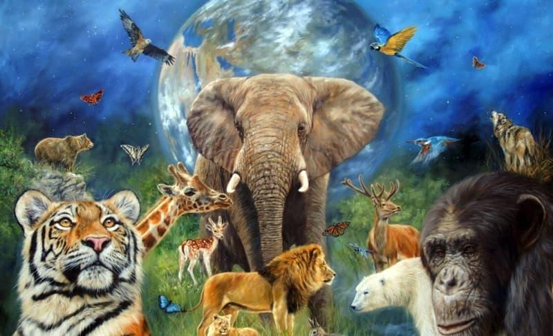 Natur Wissensfrage: Welche Lebewesen sind am zählebigsten auf der Erde?
