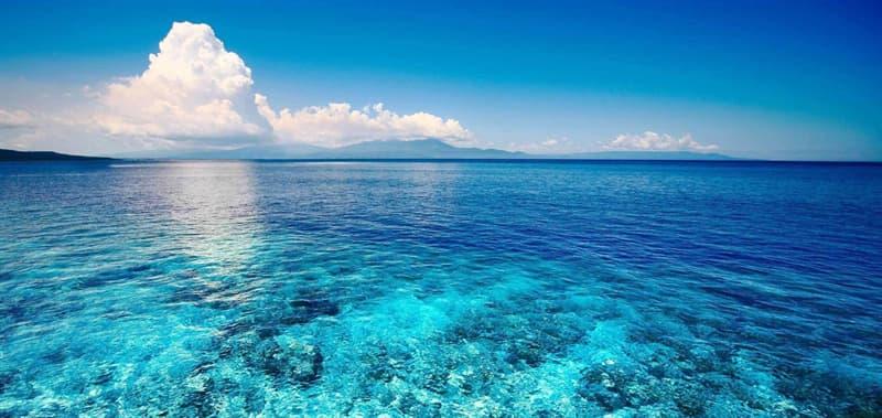 Географія Запитання-цікавинка: Який з існуючих океанів найбільший?