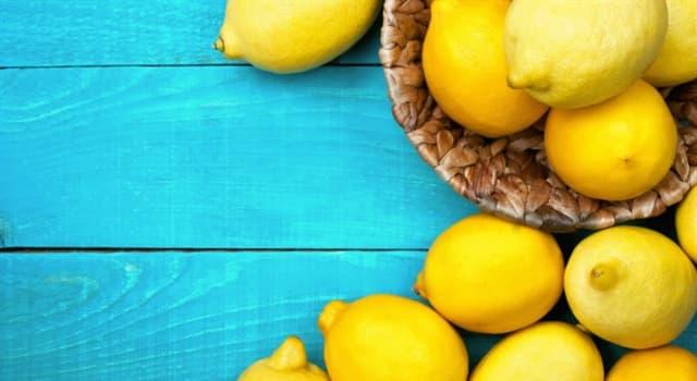 природа Запитання-цікавинка: Яку вагу у найбільшого лимона в світі?