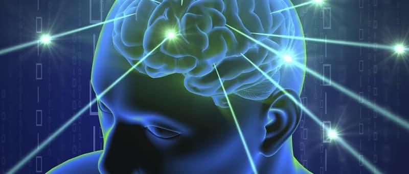 Наука Запитання-цікавинка: Клітини мозку складаються на 60% з чого?