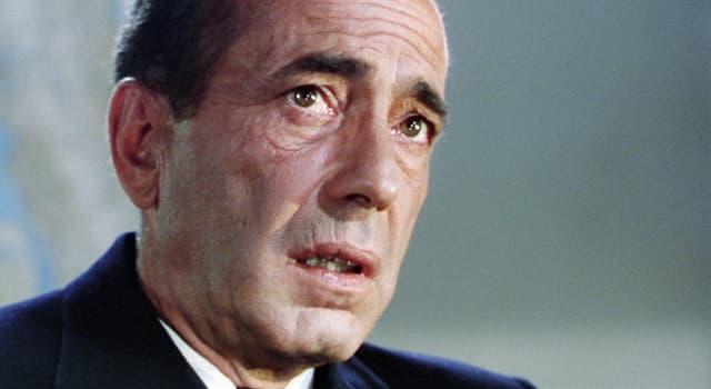 Películas Pregunta Trivia: ¿Por qué película Humphrey Bogart ganó su único premio de la Academia de Cine Americana?