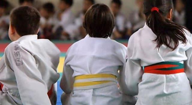 sport Pytanie-Ciekawostka: Z jakiego kraju pochodzi Judo?