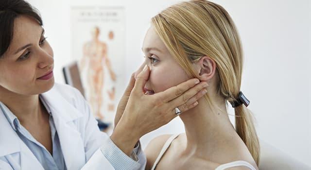 Wissenschaft Wissensfrage: Wie heißt das Teilgebiet der Medizin, das sich mit der Haut befasst?