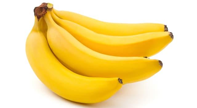 natura Pytanie-Ciekawostka: Jak nazywa się ta grupa bananów?