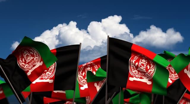 natura Pytanie-Ciekawostka: Które z tych zwierząt jest narodowym zwierzęciem Afganistanu?