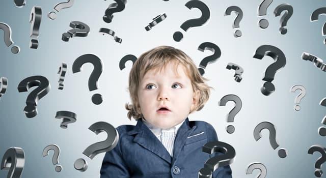 Wissenschaft Wissensfrage: Womit beschäftigt sich die Numismatik?