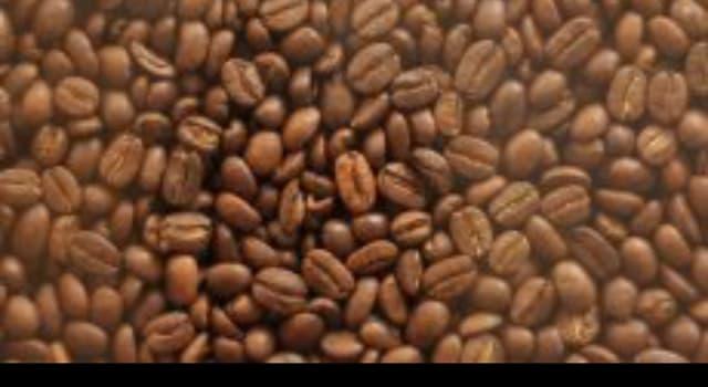 Naturaleza Pregunta Trivia: ¿Cuál de la siguientes enfermedades o plagas no ataca al café?
