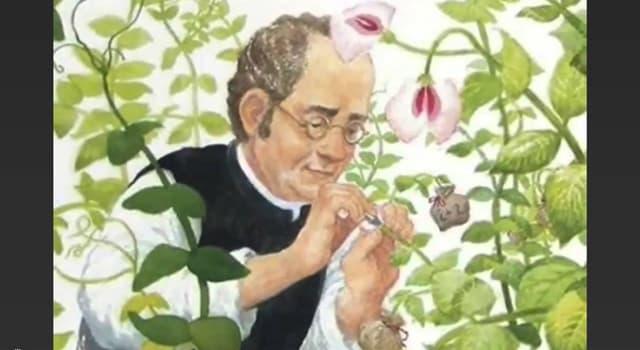Сiencia Pregunta Trivia: ¿Cuál es la principal aportación de Mendel a la ciencia?