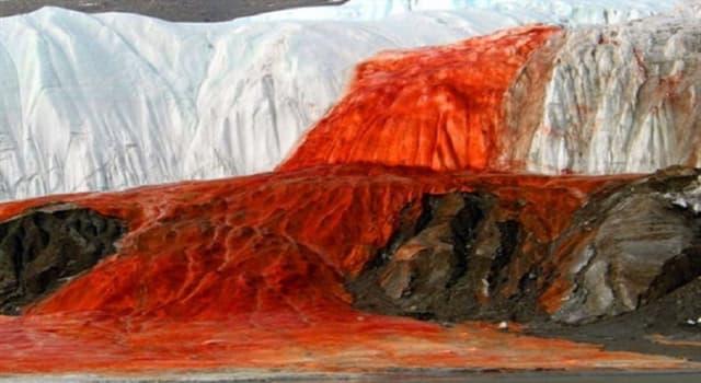 Geografía Pregunta Trivia: ¿Dónde se encuentran las Cataratas de Sangre?