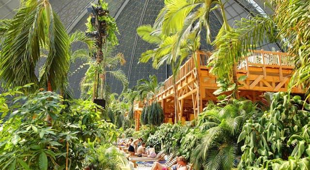 """Cultura Pregunta Trivia: ¿Dónde se ubica el parque tropical bajo techo denominado """"Tropical Island""""?"""