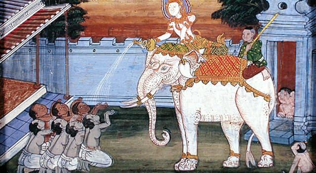 Naturaleza Pregunta Trivia: ¿Existen los elefantes blancos?