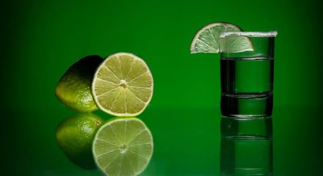 Kultur Wissensfrage: Aus welchem Rohstoff wird Tequila hergestellt?