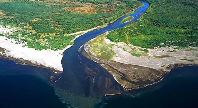 Natur Wissensfrage: Mit welchem Begriff bezeichnet man die Zuflussstelle eines Gewässers in ein anderes Gewässer?