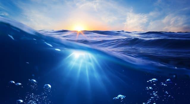 Wissenschaft Wissensfrage: Welches Gebiet der Physik befasst sich mit dem Licht?