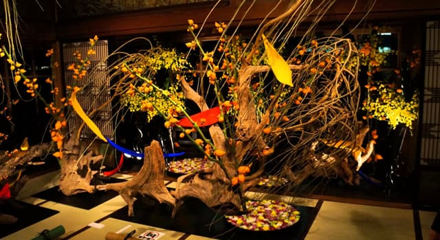 Культура Запитання-цікавинка: Як називається традиційне японське мистецтво компонування зрізаних квітів?