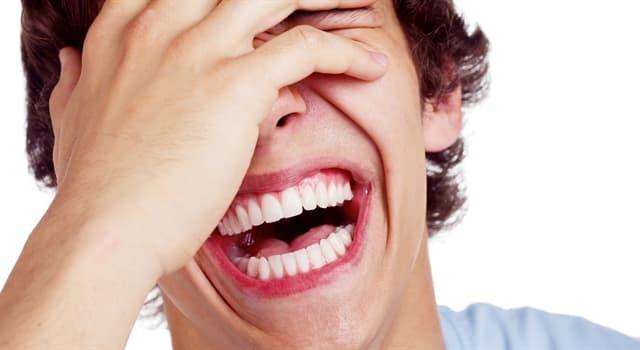 Культура Запитання-цікавинка: Як називають старий, заїжджений анекдот?
