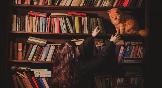 Культура Запитання-цікавинка: Як в книгах про Гаррі Поттера звали кота Герміони?