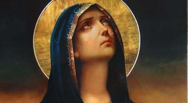 Kultur Wissensfrage: Im England des Mittelalters, welche Blume wurde mit der Jungfrau Maria assoziiert?