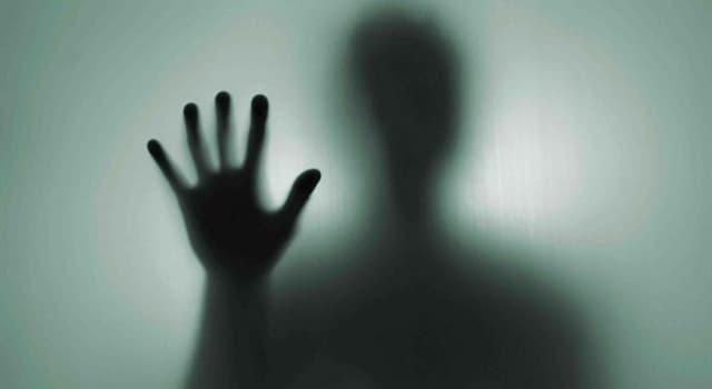 Cultura Pregunta Trivia: ¿Qué es la fantosmía?