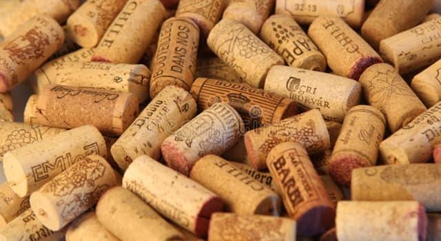 Cultura Pregunta Trivia: ¿Cuál país es el primer productor de corcho en el mundo?