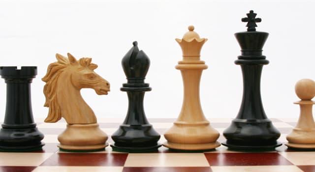 Суспільство Запитання-цікавинка: Скільки пішаків в розпорядженні у гравця в шахах на початку гри?