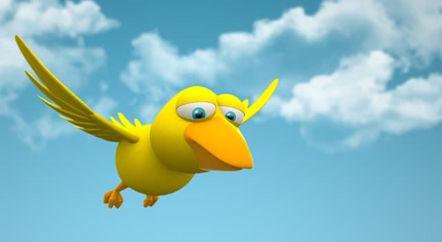 природа Запитання-цікавинка: Яка птах є рекордсменом за найвищим прискоренню, переносимого живою істотою?