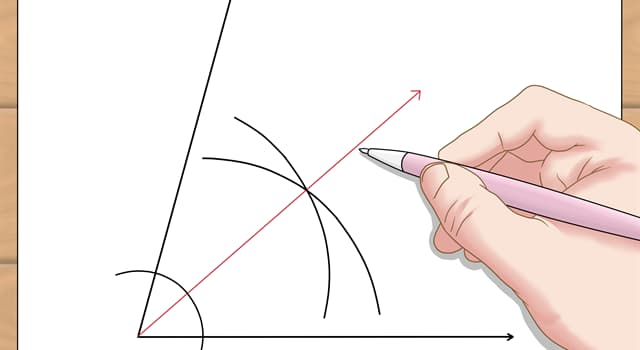 nauka Pytanie-Ciekawostka: Jaka jest czerwona linia na zdjęciu?