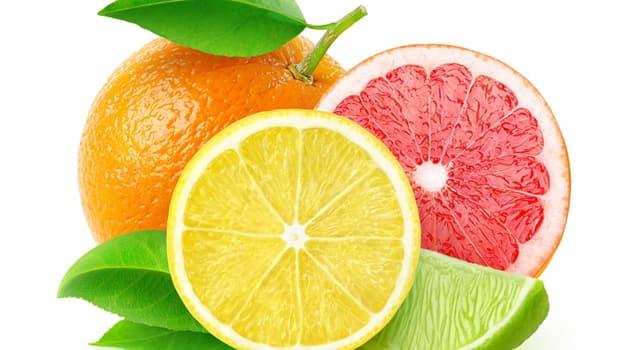 natura Pytanie-Ciekawostka: Satsuma to odmiana jakiego owoca?