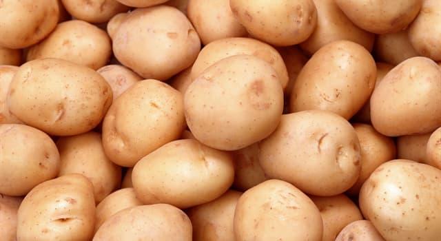 Історія Запитання-цікавинка: Що було головним овочем раціону харчування у російського народу, а потім поступово було витіснене картоплею?