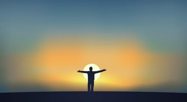 Наука Запитання-цікавинка: Що є основною одиницею життя?
