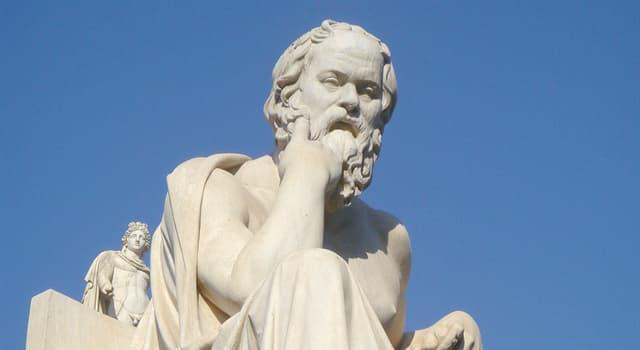 Geschichte Wissensfrage: Die erzwungene Einnahme wecher Pflanze führte Sokrates Tod herbei?