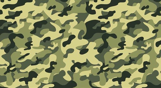 Суспільство Запитання-цікавинка: Як називається найвище військове звання?