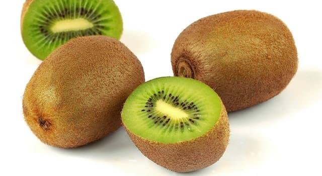 природа Запитання-цікавинка: Який фрукт зображений на фото?