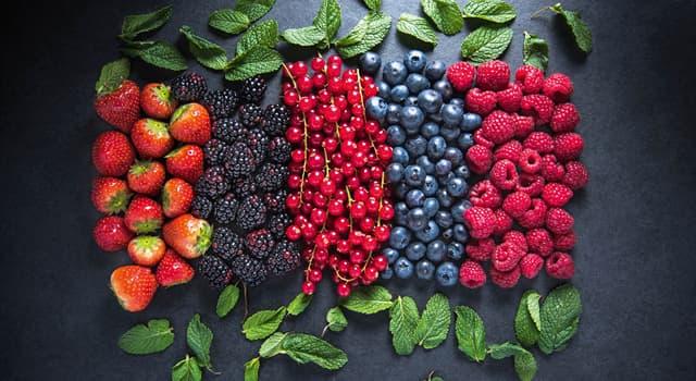 """Історія Запитання-цікавинка: Яку ягоду на Русі в XI столітті розводили в монастирських садах і називали """"агриз""""?"""