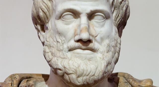 Історія Запитання-цікавинка: Хто був учителем Арістотеля?