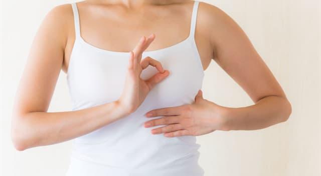 Gesellschaft Wissensfrage: Welche Farbe hat die Schleife für Brustkrebsbewusstsein?