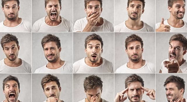 Wissenschaft Wissensfrage: Welches Gefühl ruft das Hormon Endorphin bei Menschen hervor?